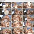 http://picclick.ru/allimage/8/291626-thumb.jpeg